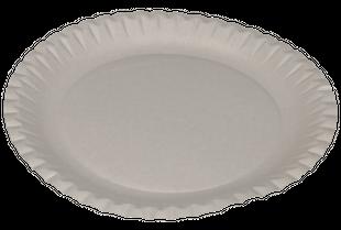 HOSTI Pappteller Ø 23 cm 100 Stück beschichtet weiß