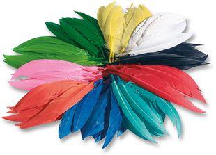 FOLIA Indianerfedern 100 g mehrere Farben