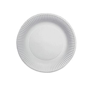 HOSTI Pappteller Ø 18 cm 100 Stück beschichtet weiß